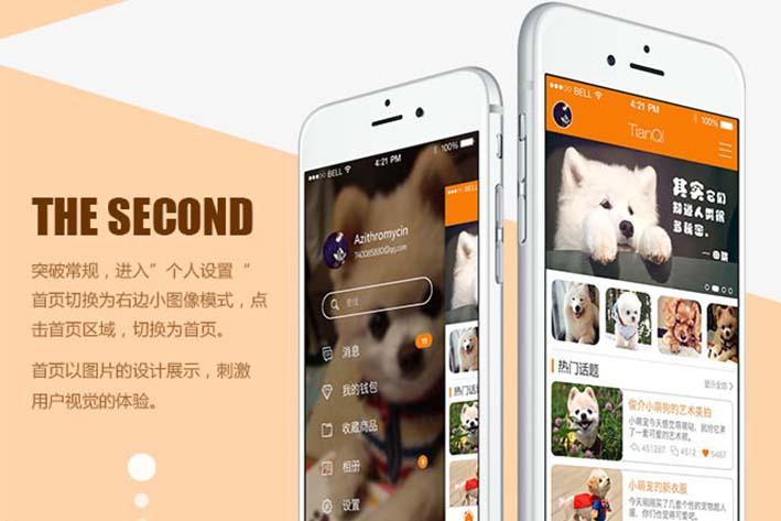 宠物APP开发平台目前发展以线下为主,线下为辅
