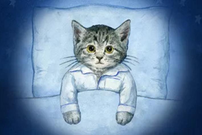 智能睡眠App开发,助你更好睡眠