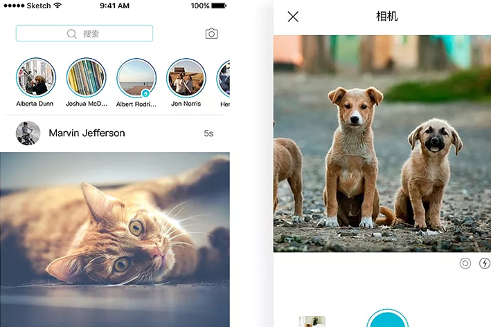 宠物App开发有哪些功能