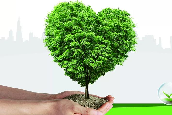 环保App开发