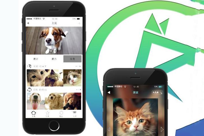 宠物App开发原因浅析