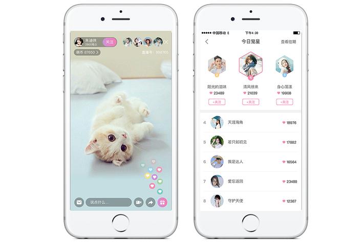 宠物医院App开发如何解决宠物问题