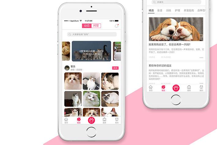 宠物社交App开发方案和市场分析