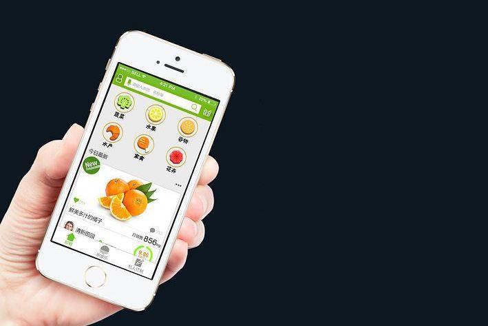 生鲜果蔬APP软件开发,广州APP开发