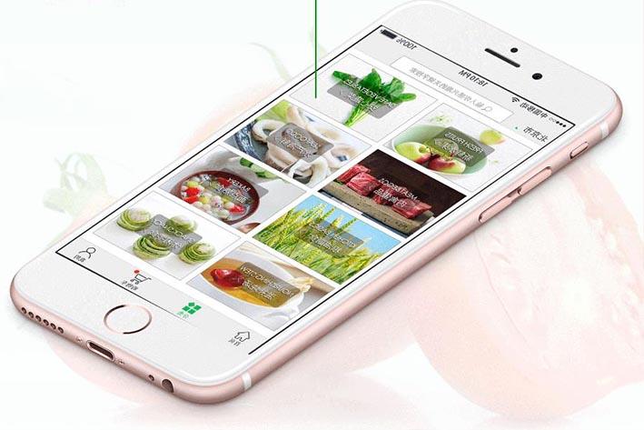 生鲜果蔬电商APP开发能为用户带来什么