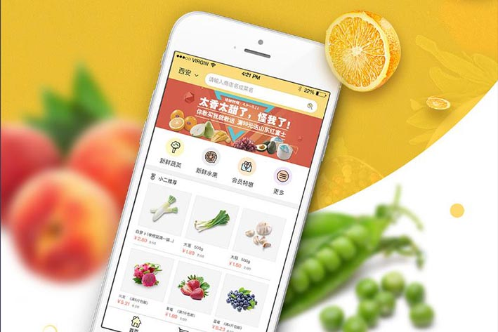 果蔬配送APP开发哪些特色功能比较好