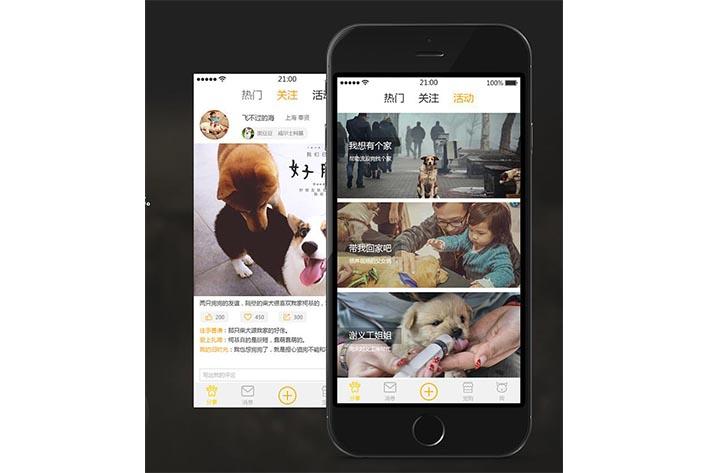 宠物社交APP开发可以为用户提供什么便捷