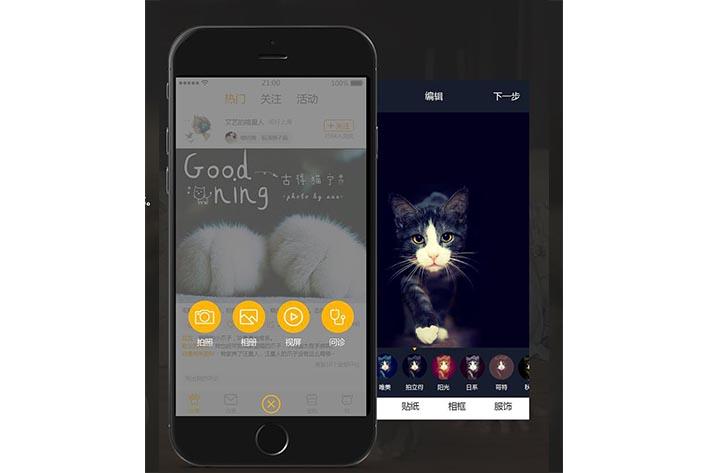 宠物电商平台开发需要具备什么便捷服务
