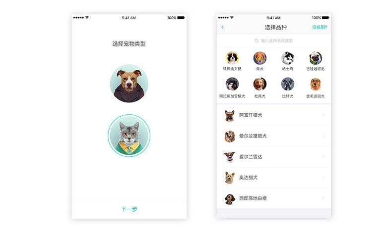 宠物社交app开发的特点及需求分析