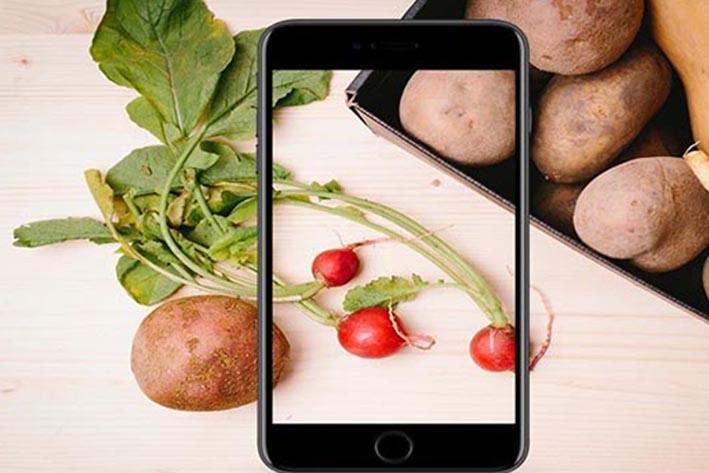 蔬菜app软件开发需要经过哪些步骤